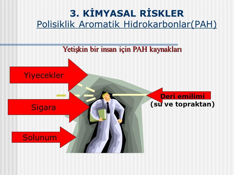 3. KİMYASAL RİSKLER Polisiklik Aromatik Hidrokarbonlar(PAH) Deri emilimi (su ve topraktan) Yiyecekler Sigara Solunum Yetişkin bir insan için PAH kayna