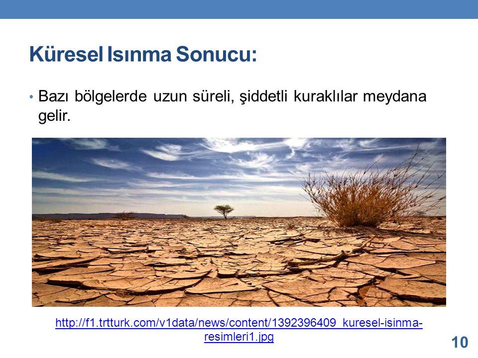 Küresel Isınma Sonucu: Bazı bölgelerde uzun süreli, şiddetli kuraklılar meydana gelir. 10 http://f1.trtturk.com/v1data/news/content/1392396409_kuresel