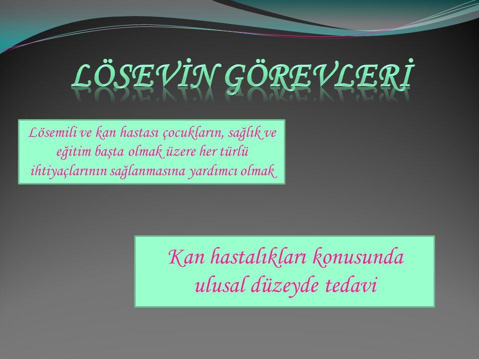 Lösev (Ankara Lösemili Çocuklar Sağlık ve Eğitim Vakfı) lösemili çocuklara yardımda bulunan ve birçok ihtiyacını karşılayan bir vakıftır. 1998 yılında