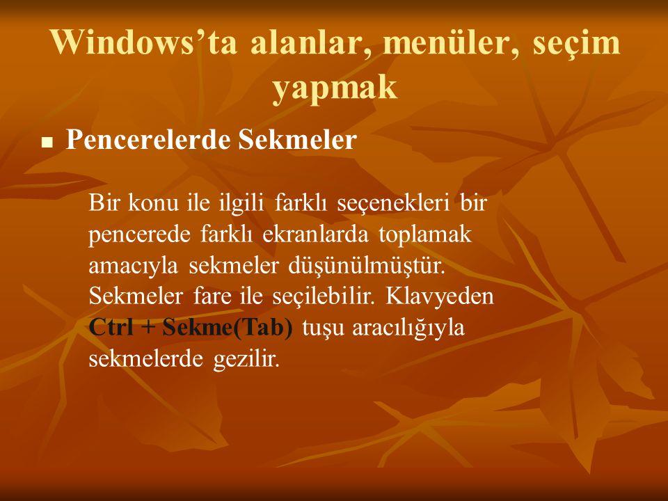 Windows'ta alanlar, menüler, seçim yapmak Pencerelerde Sekmeler Bir konu ile ilgili farklı seçenekleri bir pencerede farklı ekranlarda toplamak amacıyla sekmeler düşünülmüştür.