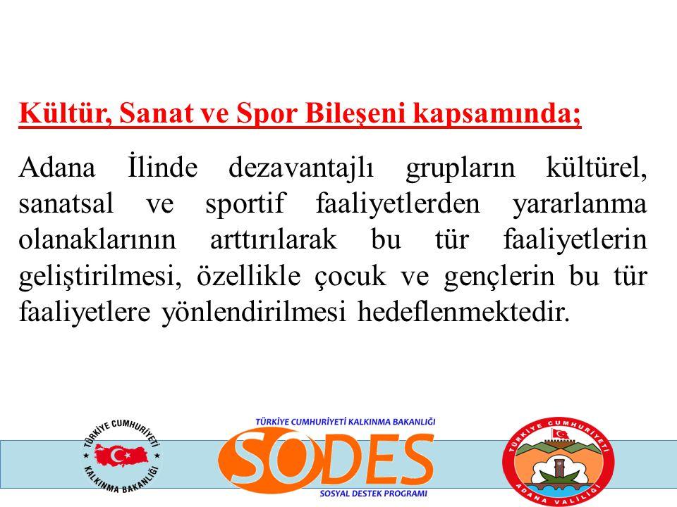 Kültür, Sanat ve Spor Bileşeni kapsamında; Adana İlinde dezavantajlı grupların kültürel, sanatsal ve sportif faaliyetlerden yararlanma olanaklarının a