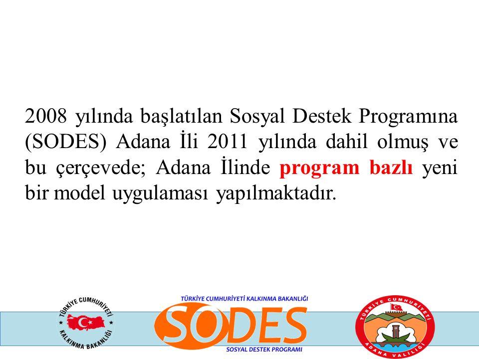 2008 yılında başlatılan Sosyal Destek Programına (SODES) Adana İli 2011 yılında dahil olmuş ve bu çerçevede; Adana İlinde program bazlı yeni bir model
