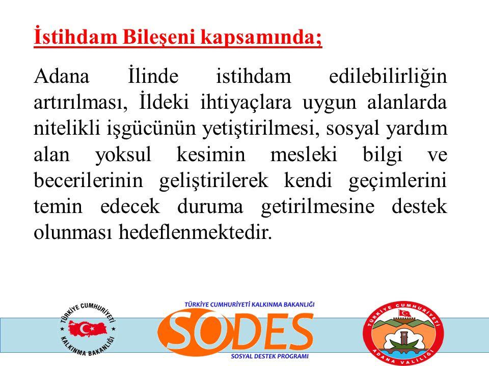 İstihdam Bileşeni kapsamında; Adana İlinde istihdam edilebilirliğin artırılması, İldeki ihtiyaçlara uygun alanlarda nitelikli işgücünün yetiştirilmesi