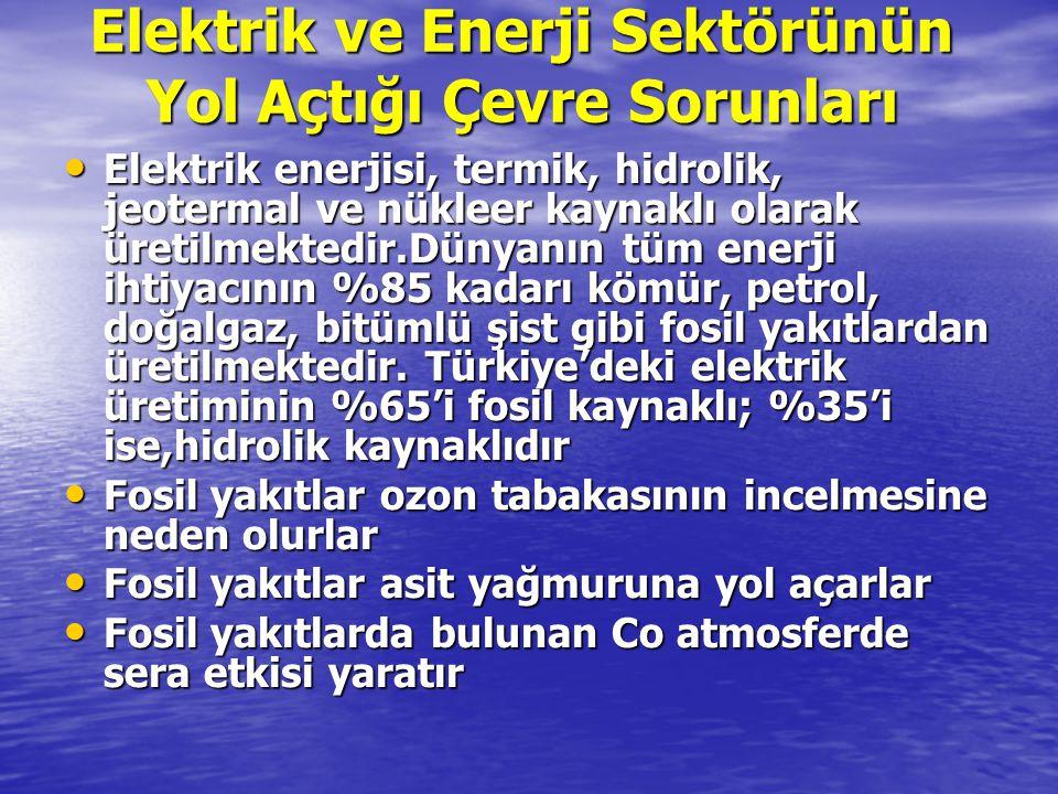 Elektrik ve Enerji Sektörünün Yol Açtığı Çevre Sorunları Elektrik enerjisi, termik, hidrolik, jeotermal ve nükleer kaynaklı olarak üretilmektedir.Düny