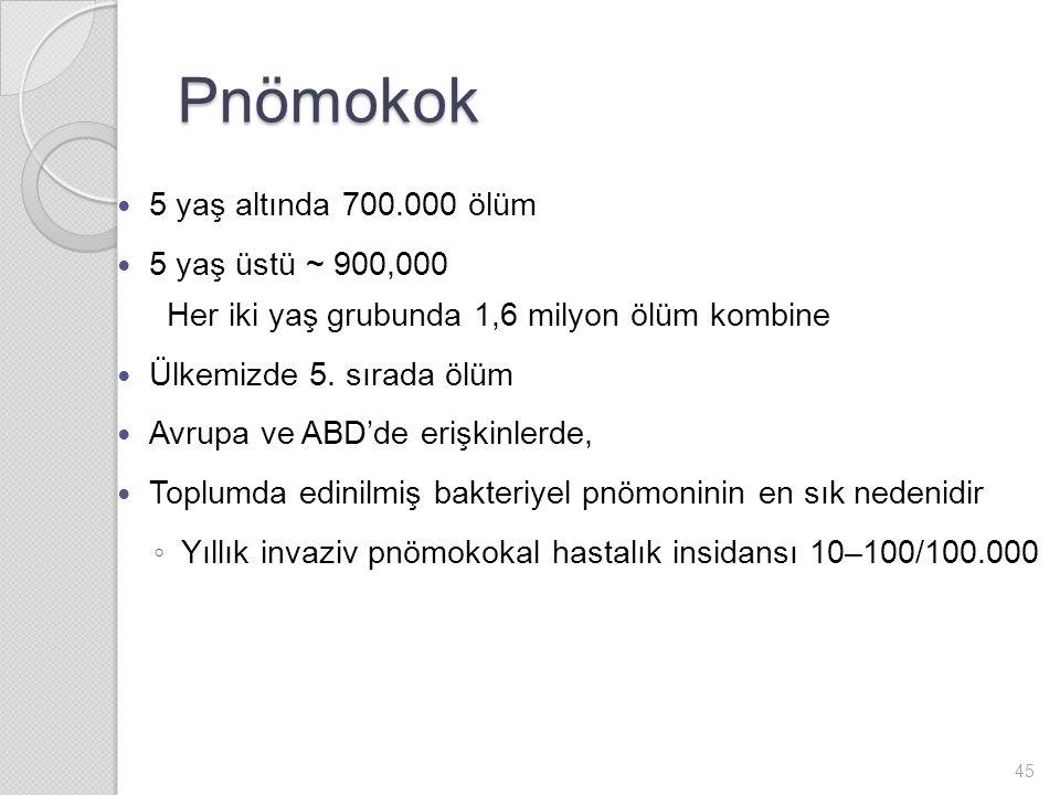 Pnömokok 5 yaş altında 700.000 ölüm 5 yaş üstü ~ 900,000 Her iki yaş grubunda 1,6 milyon ölüm kombine Ülkemizde 5.