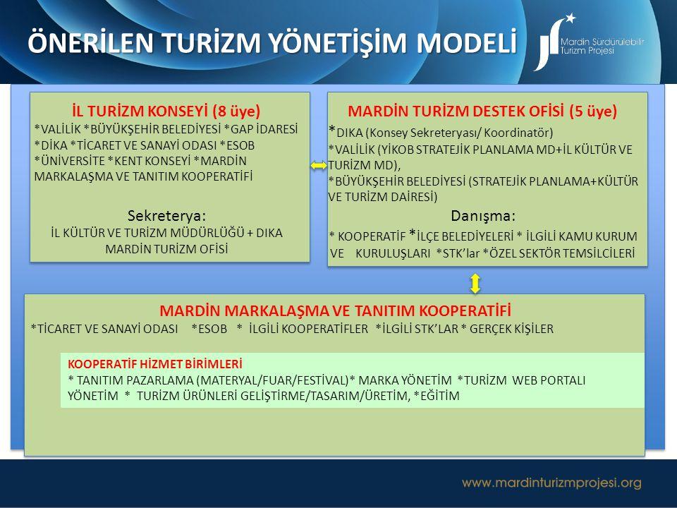 Mardin İli Turizm Konseyi, Mardin'de turizmin geliştirilmesiyle ilgili yerel ve bölgesel temsilcilerle birlikte, ildeki turizm geliştirme faaliyetlerine yön veren, ana politikaları belirleyen en üst karar organı olarak önerilmektedir.