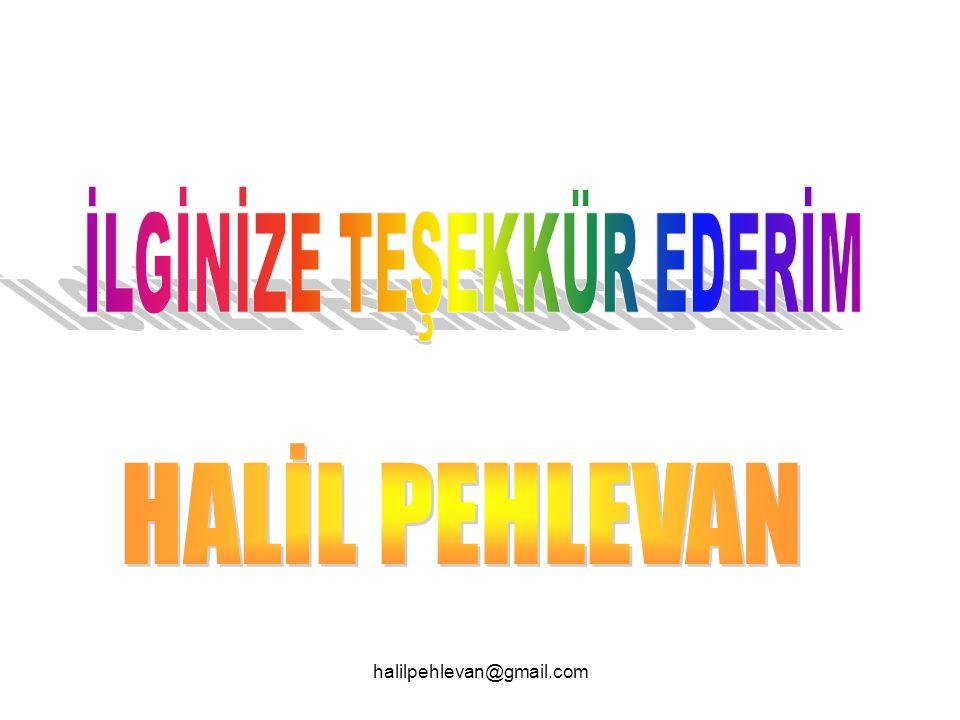 halilpehlevan@gmail.com