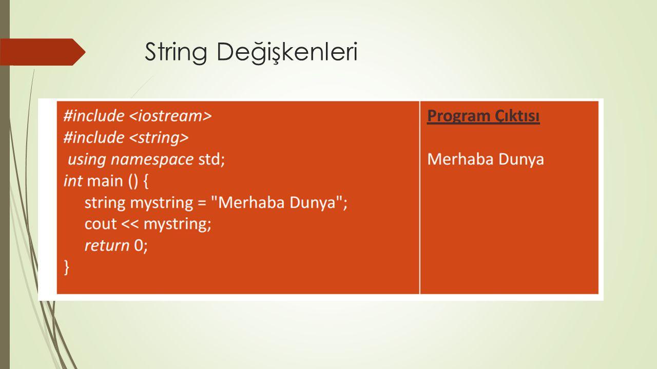 String Değişkenleri