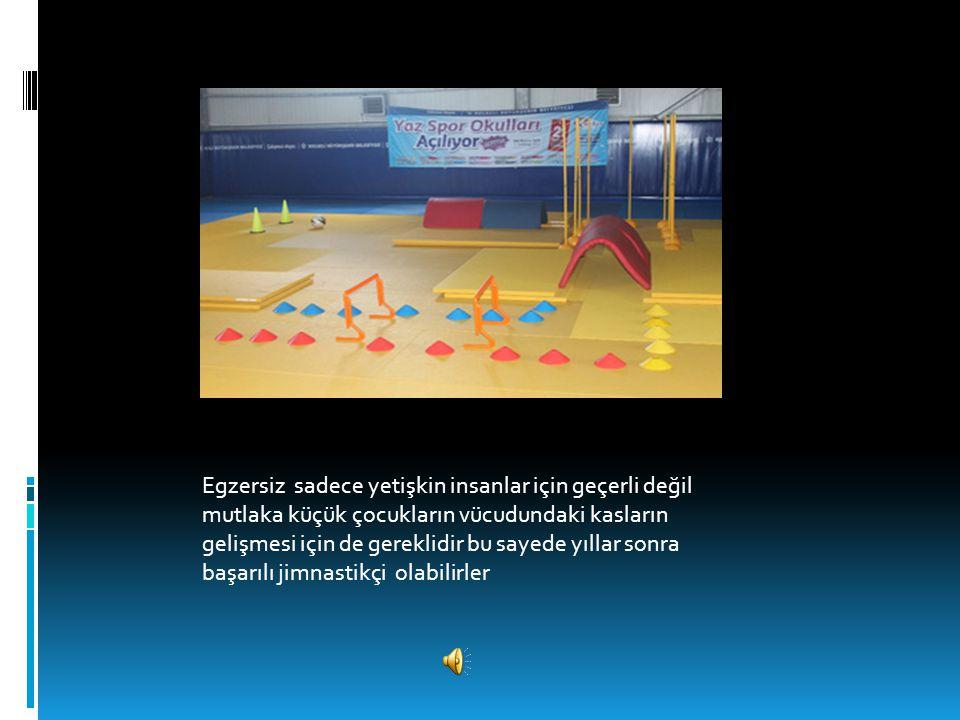 Böyle temiz hava egzersizleri insanın nefesini açar, rahatlatır ve vücudun güçlü kalmasını sağlar Yukarıdaki gibi egzersiz veya spor Salonlarında egze