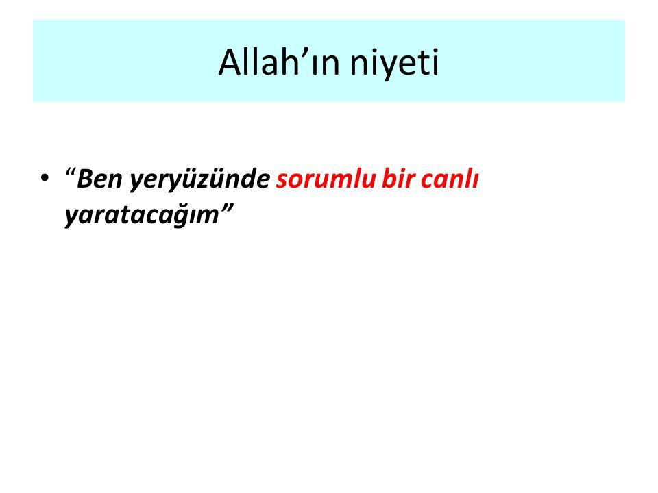 """Allah'ın niyeti """"Ben yeryüzünde sorumlu bir canlı yaratacağım"""""""