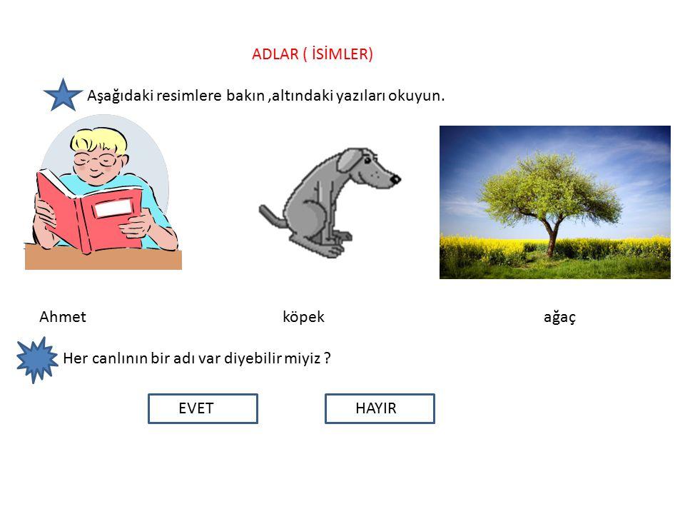 ADLAR ( İSİMLER) Aşağıdaki resimlere bakın,altındaki yazıları okuyun.