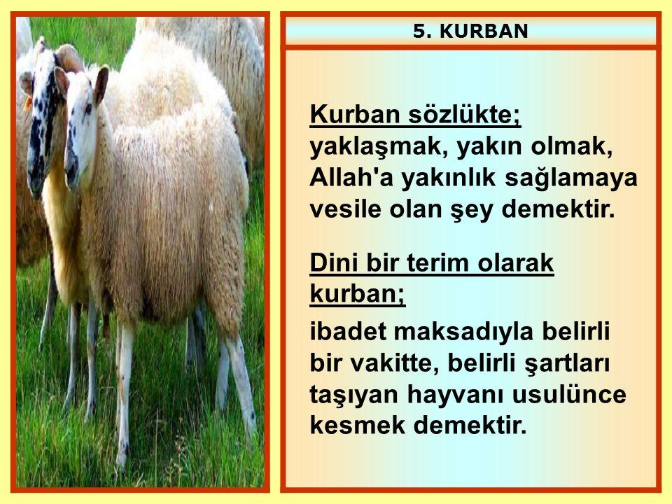 5. KURBAN Kurban sözlükte; yaklaşmak, yakın olmak, Allah'a yakınlık sağlamaya vesile olan şey demektir. Dini bir terim olarak kurban; ibadet maksadıyl