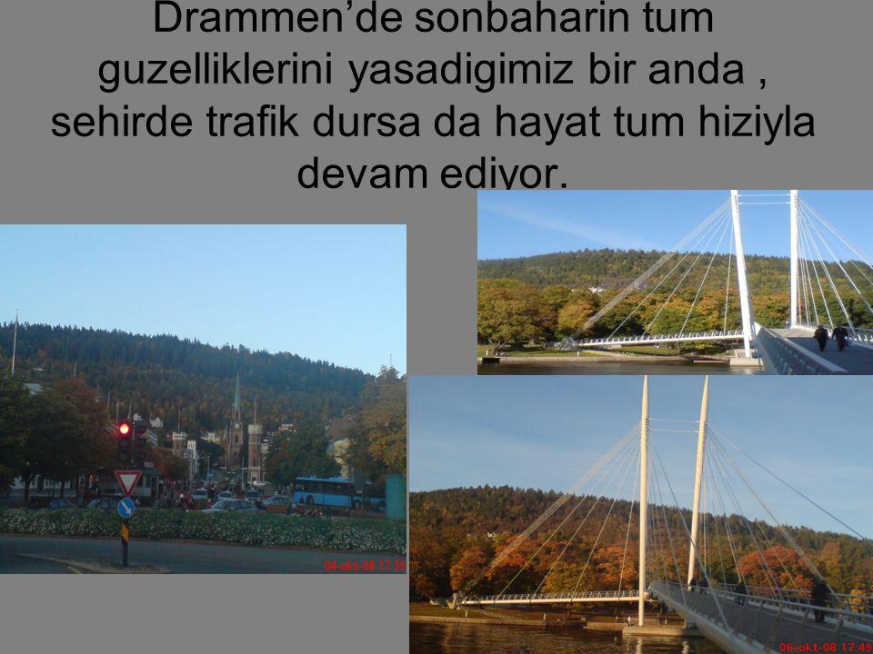 Drammen'de sonbaharin tum guzelliklerini yasadigimiz bir anda, sehirde trafik dursa da hayat tum hiziyla devam ediyor.