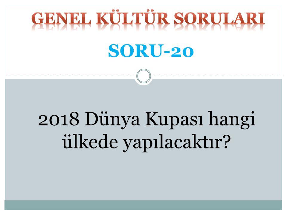 KIŞ UYKUSU CEVAP-19