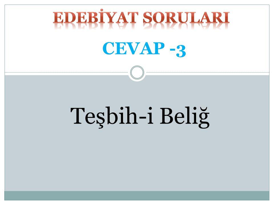 Teşbih-i Beliğ CEVAP -3