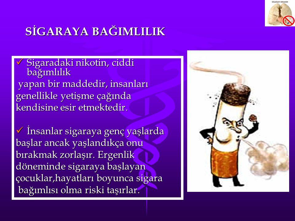 TÜRKİYE'DE SİGARA Türkiye de her yıl 100 bin insanımızı sigaraya kurban vermekteyiz.