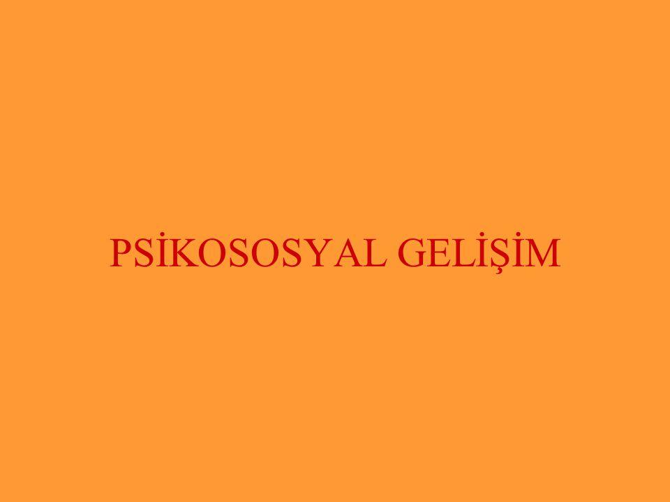 Subaşı İlkokulu PSİKOSOSYAL GELİŞİM