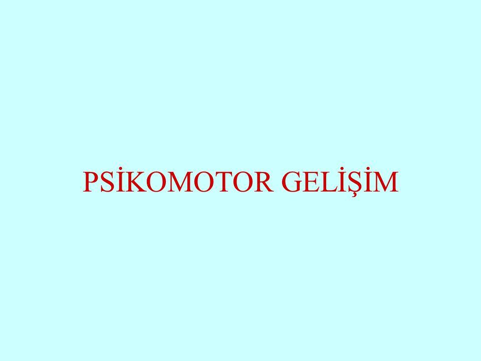 Subaşı İlkokulu PSİKOMOTOR GELİŞİM