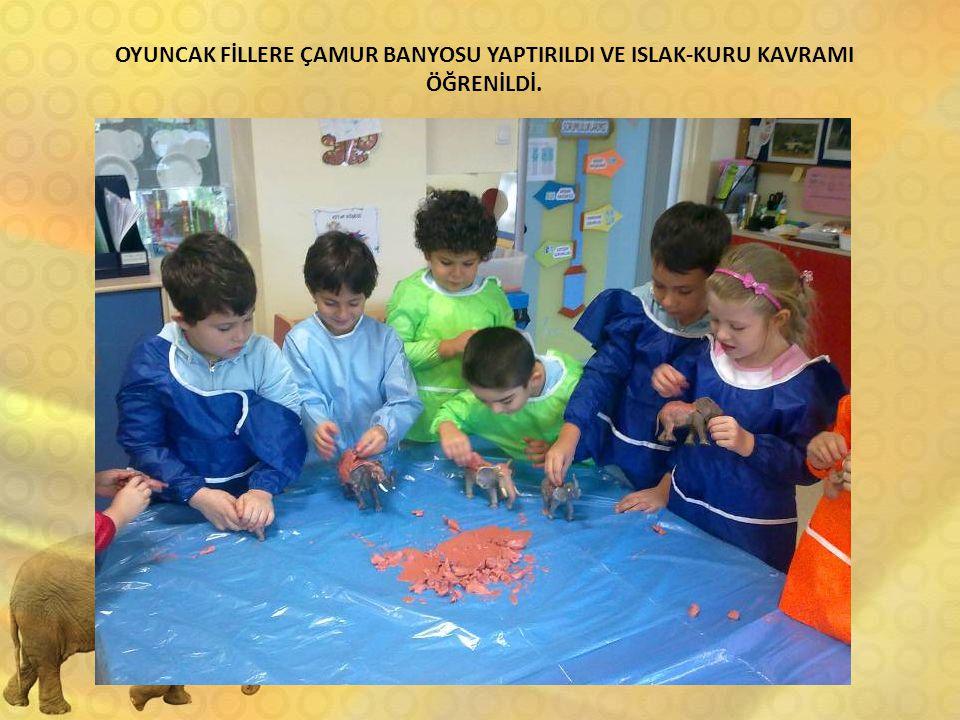 OYUNCAK FİLLERE ÇAMUR BANYOSU YAPTIRILDI VE ISLAK-KURU KAVRAMI ÖĞRENİLDİ.