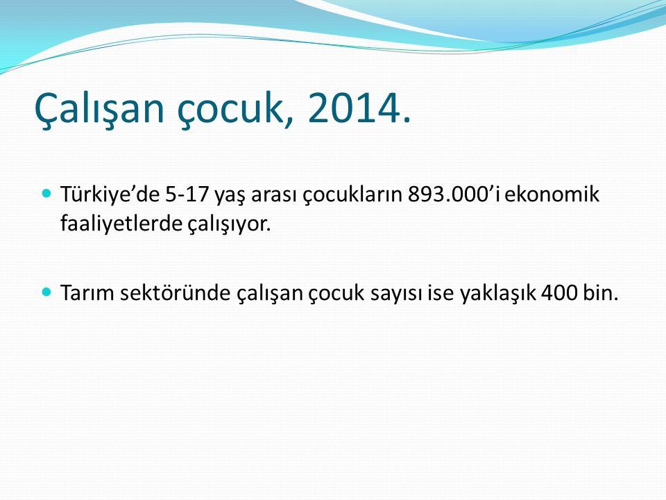 Çalışan çocuk, 2014. Türkiye'de 5-17 yaş arası çocukların 893.000'i ekonomik faaliyetlerde çalışıyor. Tarım sektöründe çalışan çocuk sayısı ise yaklaş