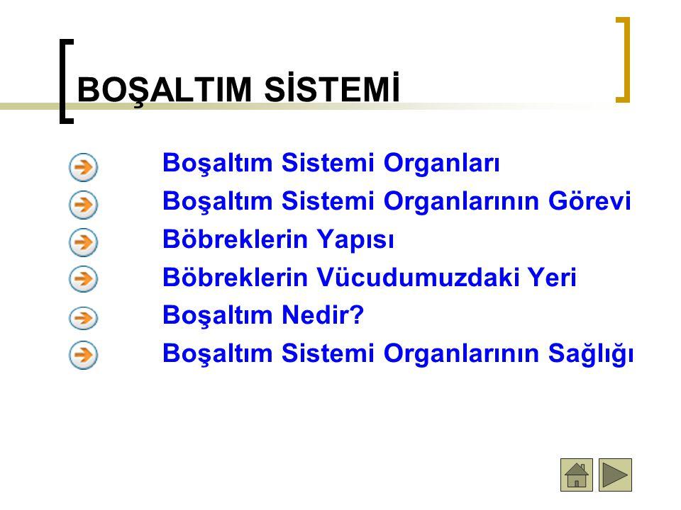 BOŞALTIM SİSTEMİ Boşaltım Sistemi Organları Boşaltım Sistemi Organlarının Görevi Böbreklerin Yapısı Böbreklerin Vücudumuzdaki Yeri Boşaltım Nedir? Boş