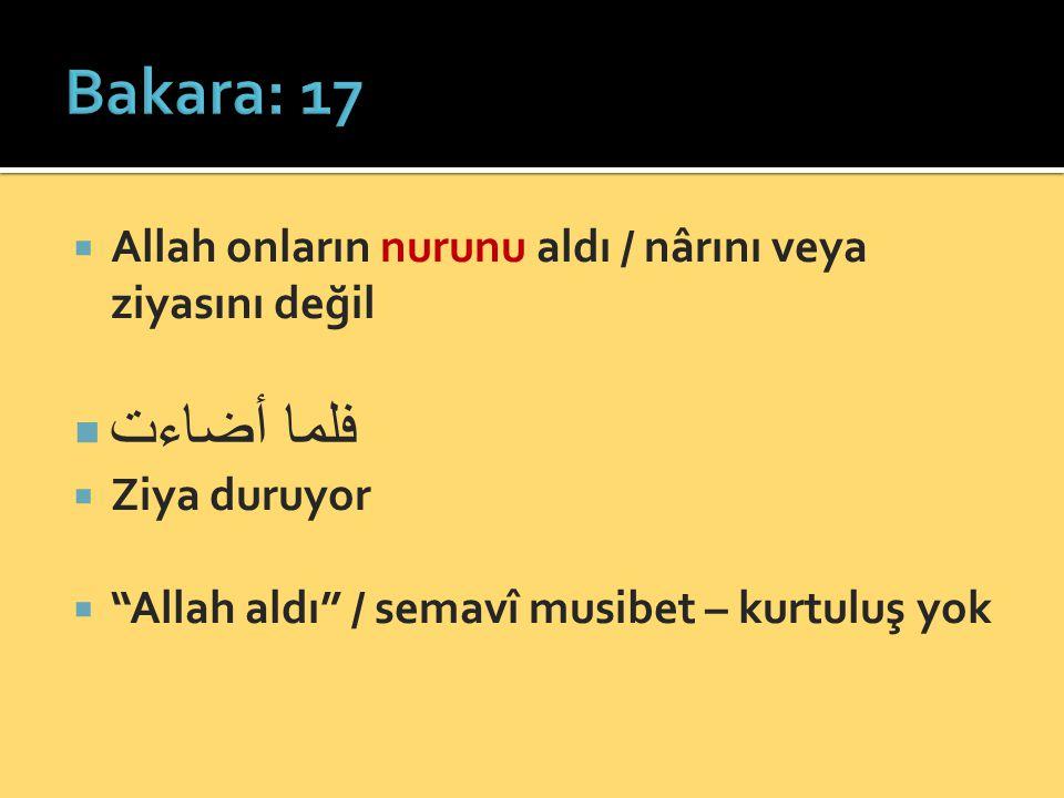 """ Allah onların nurunu aldı / nârını veya ziyasını değil  فلما أضاءت  Ziya duruyor  """"Allah aldı"""" / semavî musibet – kurtuluş yok"""
