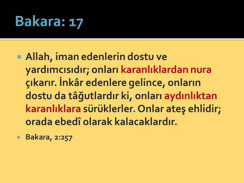  Allah, iman edenlerin dostu ve yardımcısıdır; onları karanlıklardan nura çıkarır. İnkâr edenlere gelince, onların dostu da tâğutlardır ki, onları ay