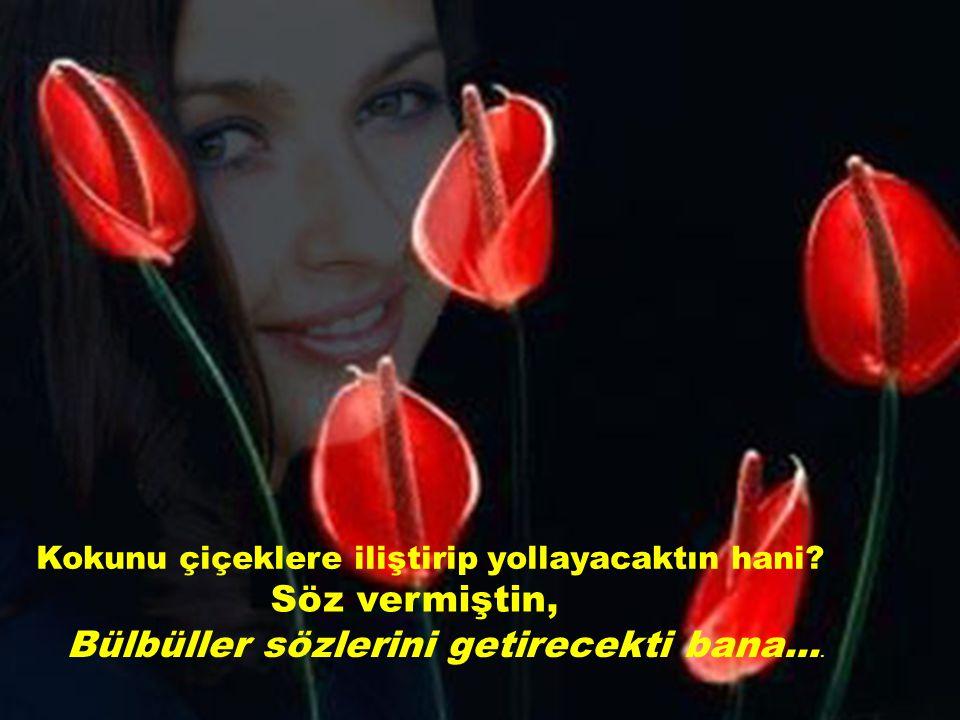 Kokunu çiçeklere iliştirip yollayacaktın hani? Söz vermiştin, Bülbüller sözlerini getirecekti bana....