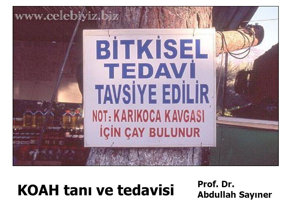 KOAH tanı ve tedavisi Prof. Dr. Abdullah Sayıner