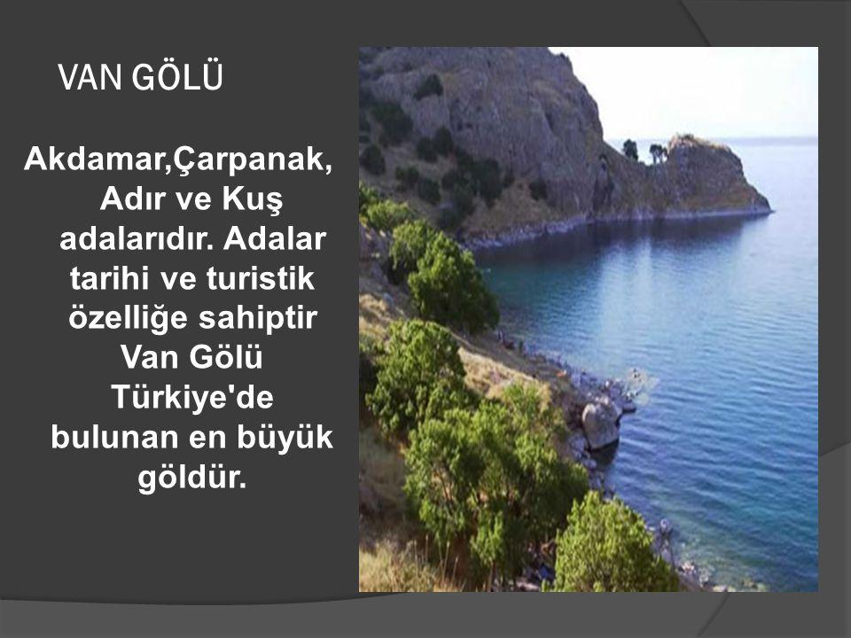 VAN GÖLÜ Akdamar,Çarpanak, Adır ve Kuş adalarıdır. Adalar tarihi ve turistik özelliğe sahiptir Van Gölü Türkiye'de bulunan en büyük göldür.
