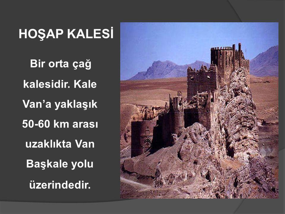 Bir orta çağ kalesidir. Kale Van'a yaklaşık 50-60 km arası uzaklıkta Van Başkale yolu üzerindedir. HOŞAP KALESİ