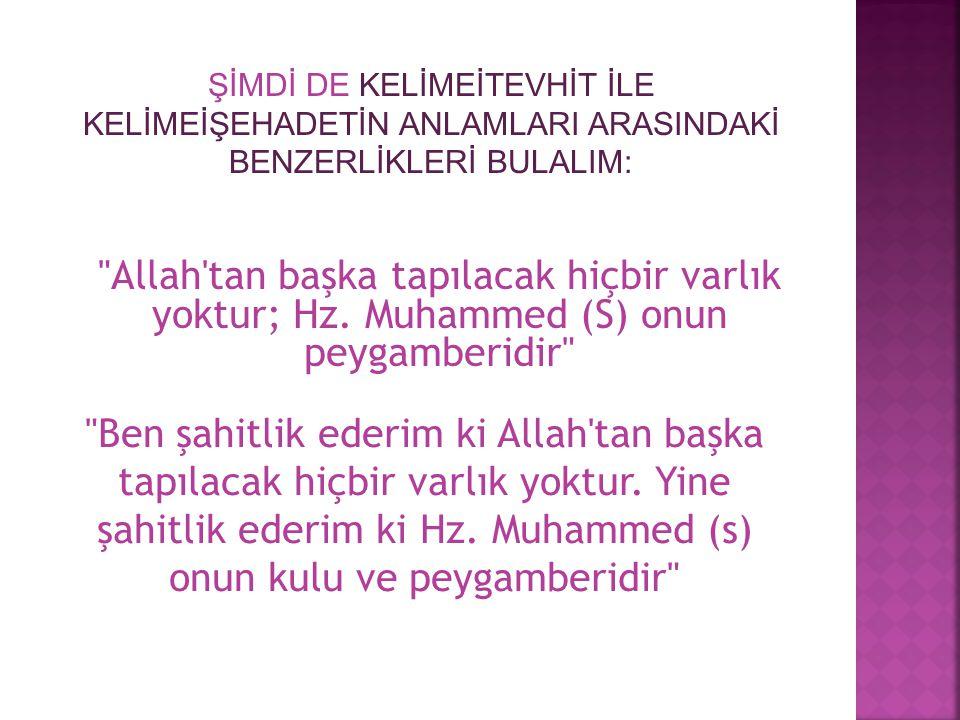 Allah tan başka tapılacak hiçbir varlık yoktur; Hz.