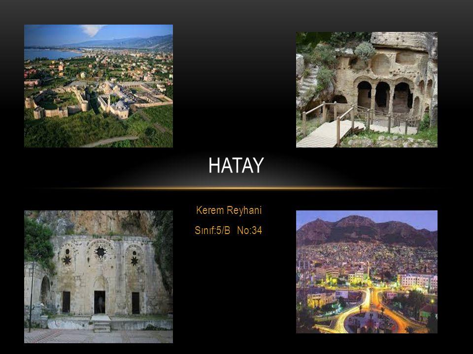Kerem Reyhani Sınıf:5/B No:34 HATAY