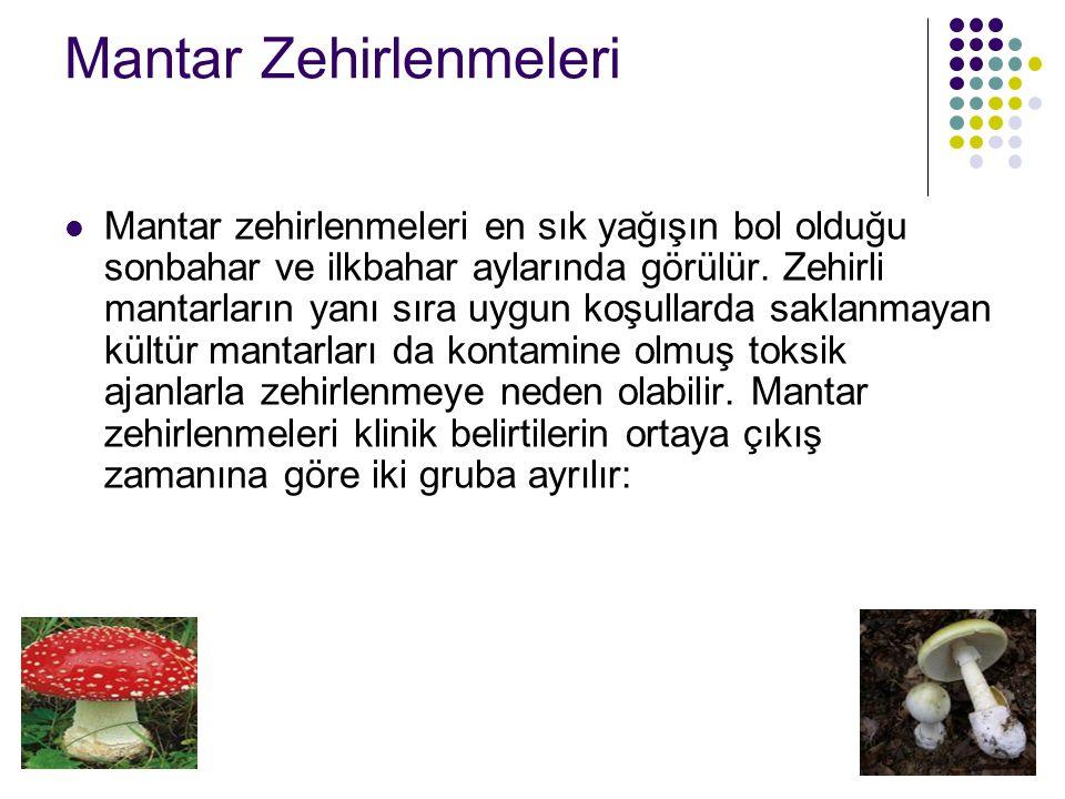 Mantar Zehirlenmeleri Mantar zehirlenmeleri en sık yağışın bol olduğu sonbahar ve ilkbahar aylarında görülür.