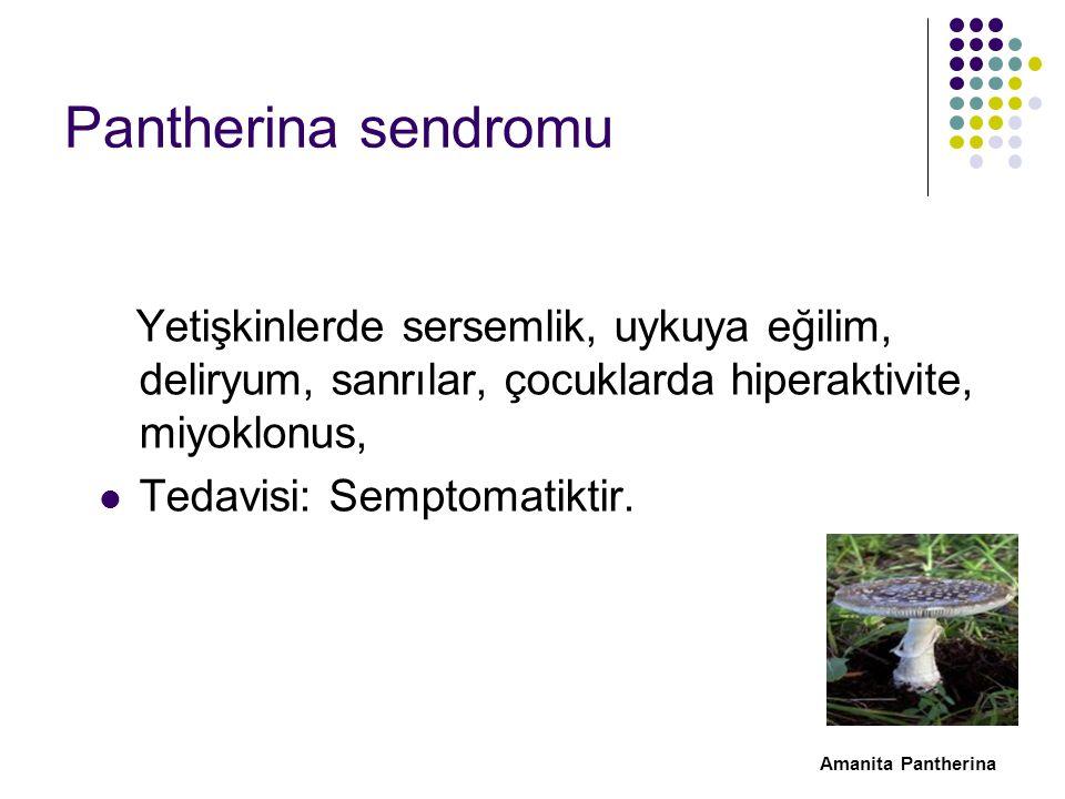 Pantherina sendromu Yetişkinlerde sersemlik, uykuya eğilim, deliryum, sanrılar, çocuklarda hiperaktivite, miyoklonus, Tedavisi: Semptomatiktir.