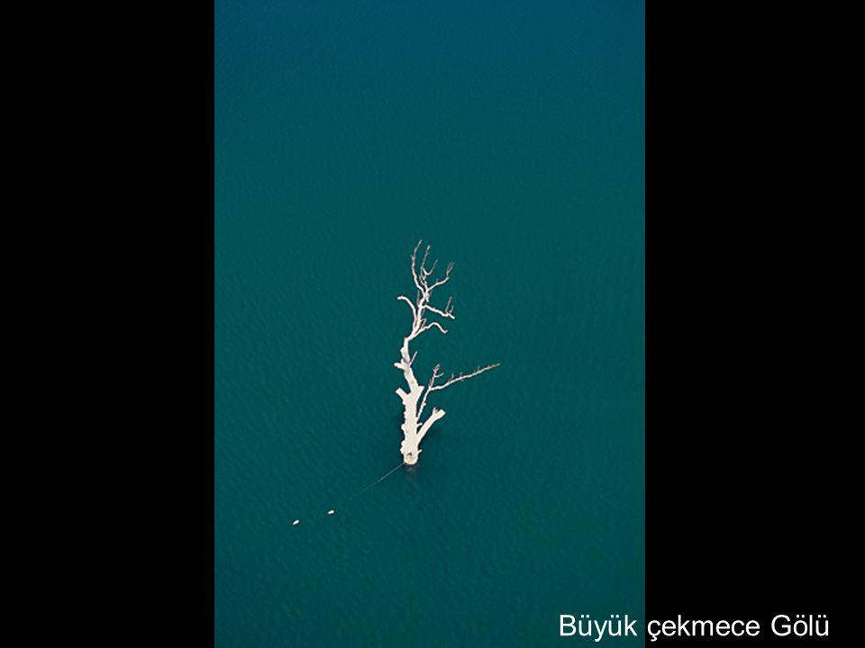 Büyük çekmece Gölü
