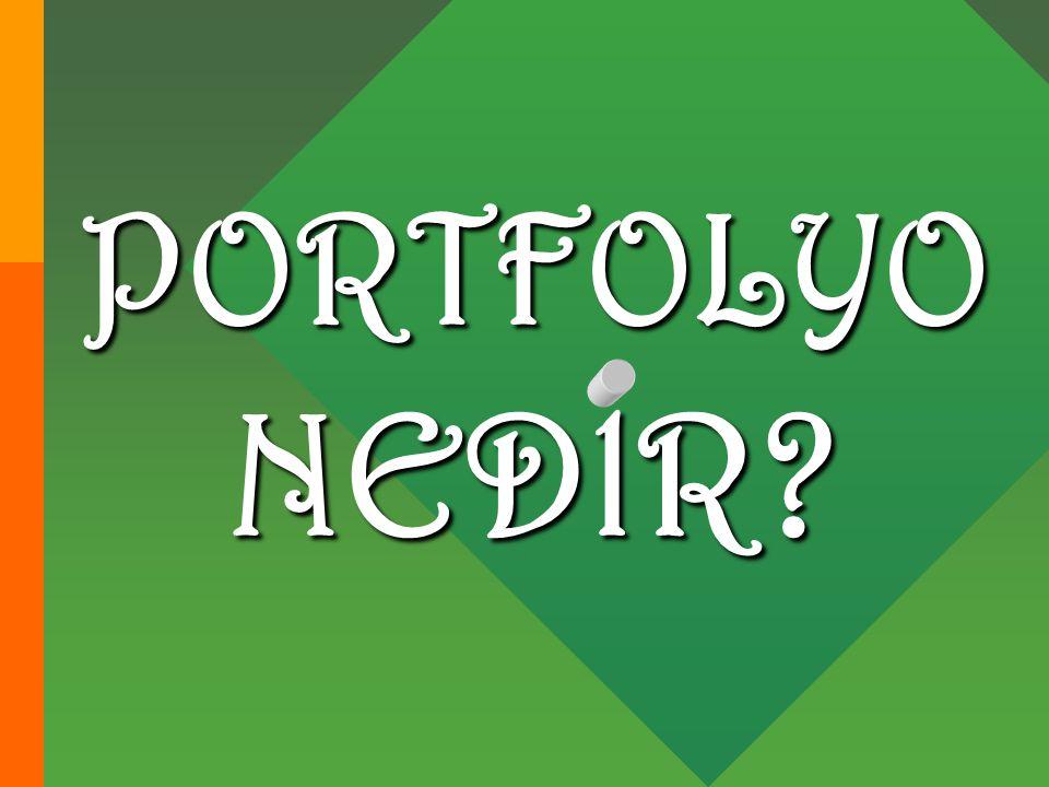 PORTFOLYO NEDlR?