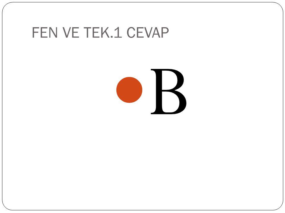FEN VE TEK.1 A) 2P B) 4P C) P D) 3P