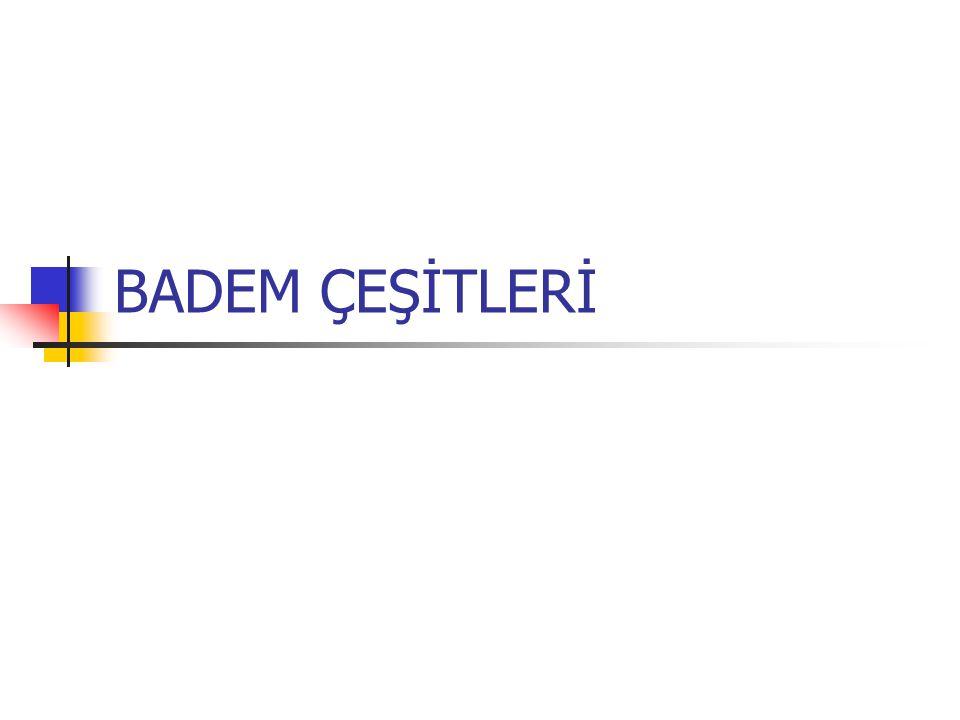 BADEM ÇEŞİTLERİ