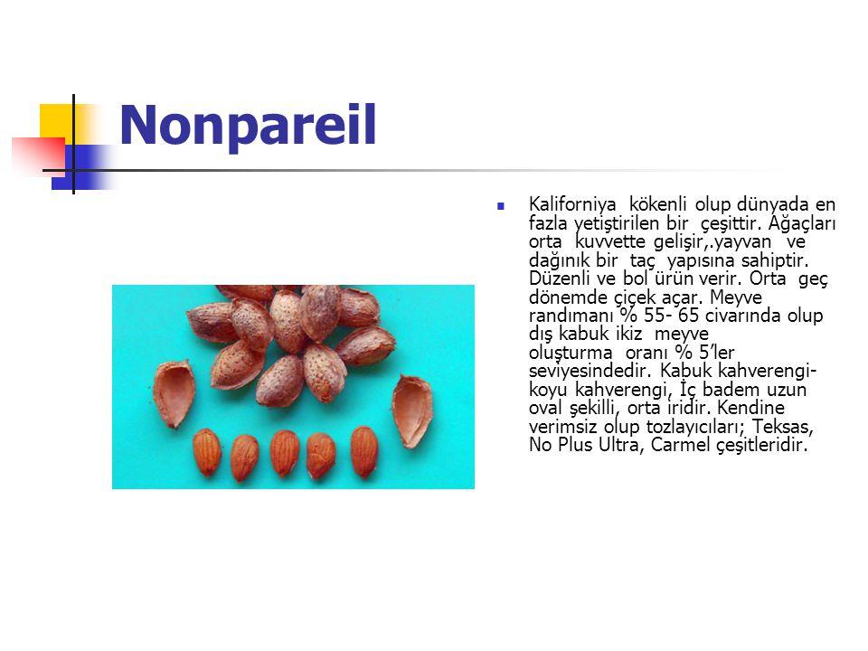 Nonpareil Kaliforniya kökenli olup dünyada en fazla yetiştirilen bir çeşittir.