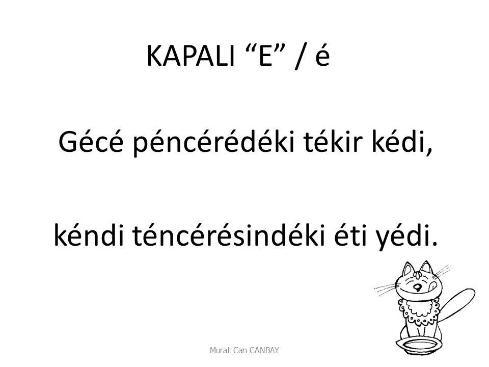 """Murat Can CANBAY KAPALI """"E"""" / é Gécé péncérédéki tékir kédi, kéndi téncérésindéki éti yédi."""