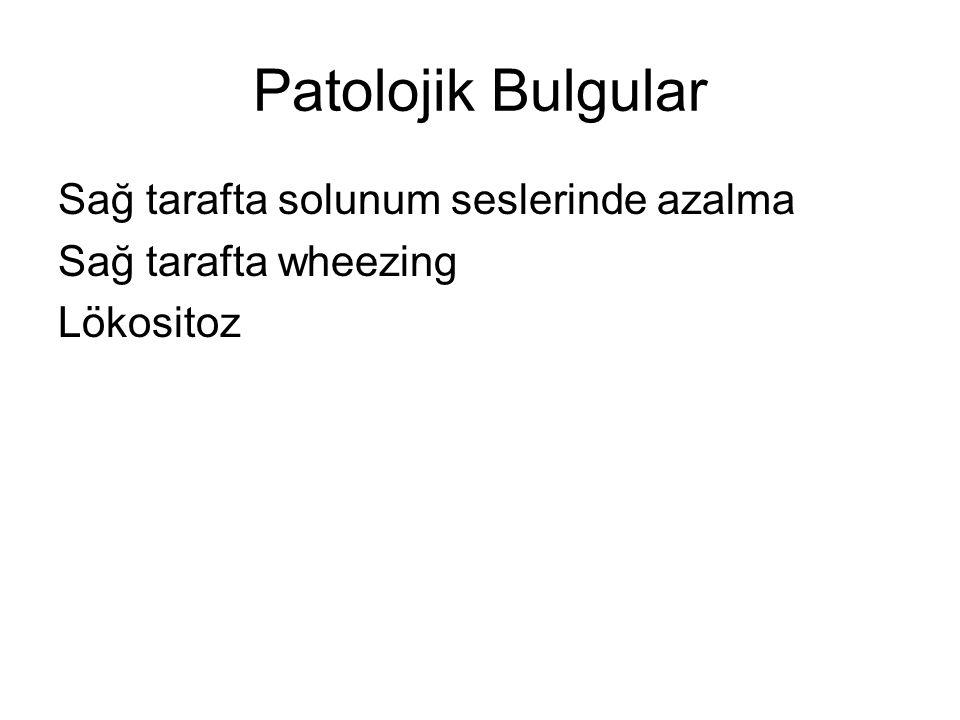 Patolojik Bulgular Sağ tarafta solunum seslerinde azalma Sağ tarafta wheezing Lökositoz