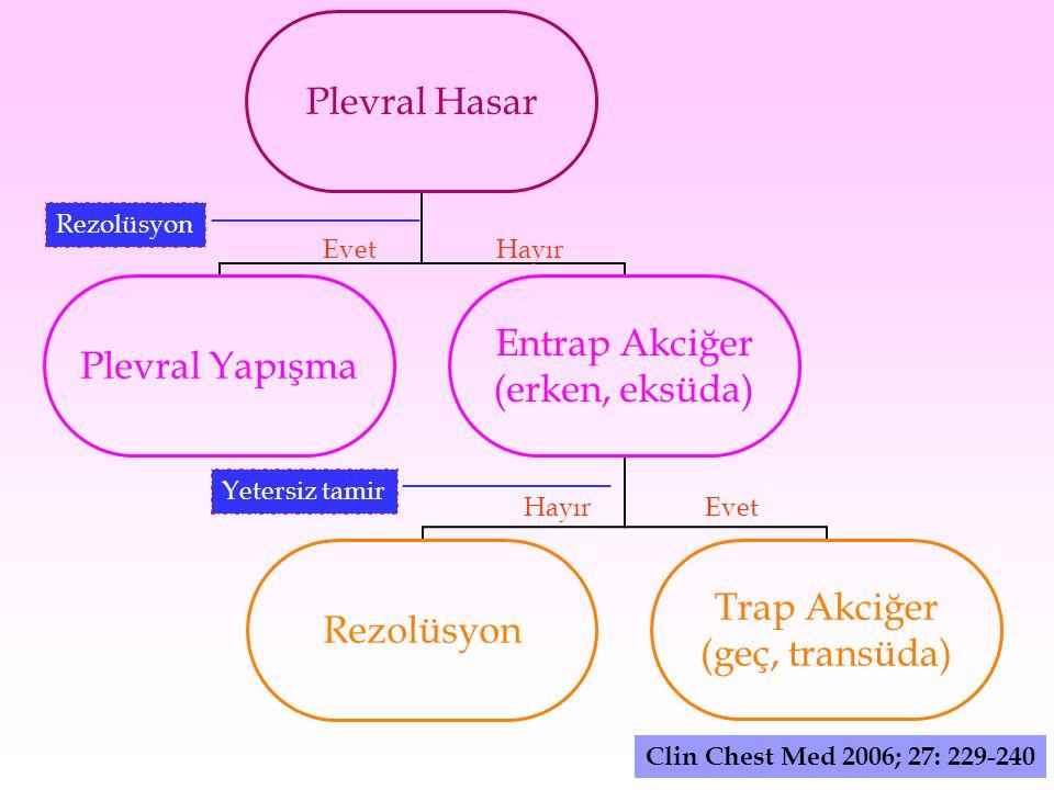 Rezolüsyon EvetHayır Yetersiz tamir EvetHayır Clin Chest Med 2006; 27: 229-240