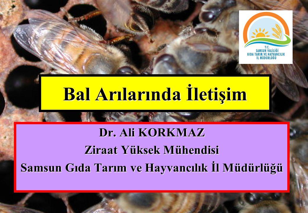 Bal Arılarında İletişim Dr. Ali KORKMAZ Ziraat Yüksek Mühendisi Samsun Gıda Tarım ve Hayvancılık İl Müdürlüğü