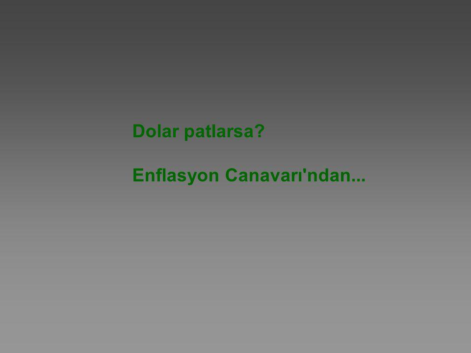 Dolar patlarsa Enflasyon Canavarı ndan...