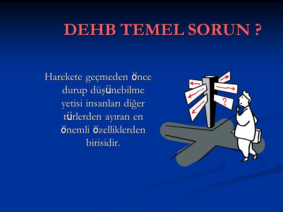 DEHB TEMEL SORUN .