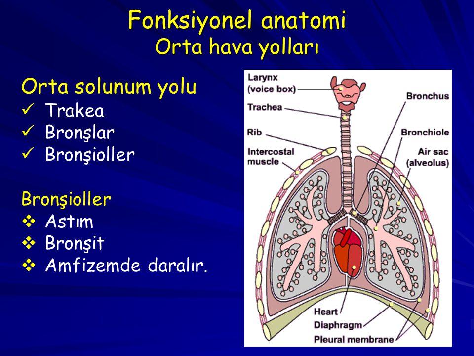 Terminal bronşiol Respiratuar bronşiyol ALVEOLAR DUCT Alveol kesesi ALVEOLAR DUCT Visseral plevra Trakea Bronş Bronşiyol Havayolu pasajı Kıkırdaksız bezsiz Kıkırdak + Bezler 1o1o 2o2o 3o3o