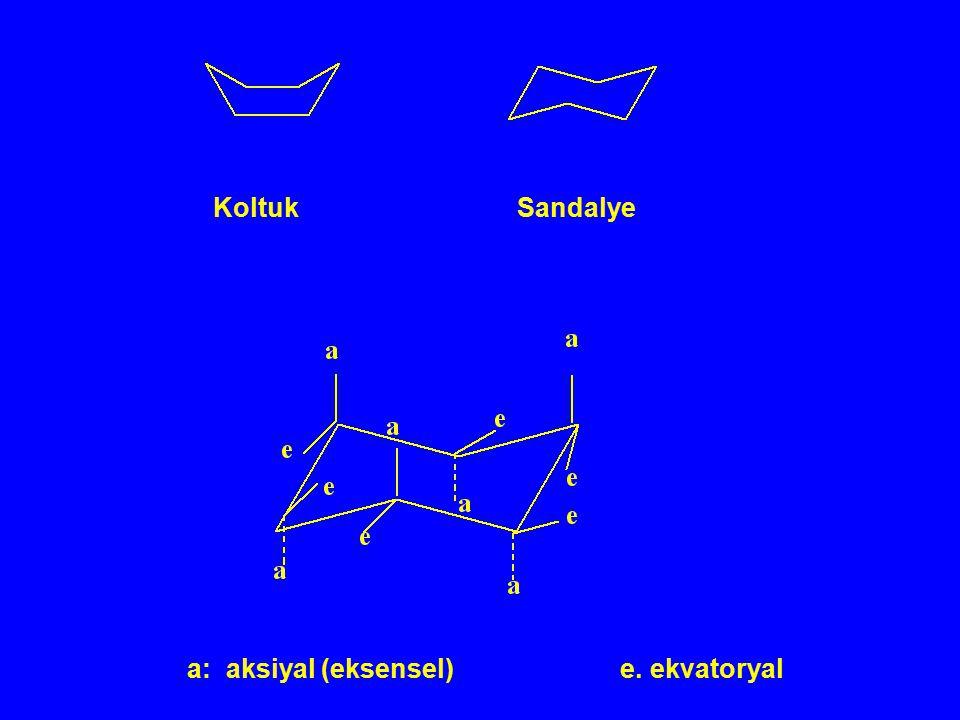 Koltuk Sandalye a: aksiyal (eksensel) e. ekvatoryal