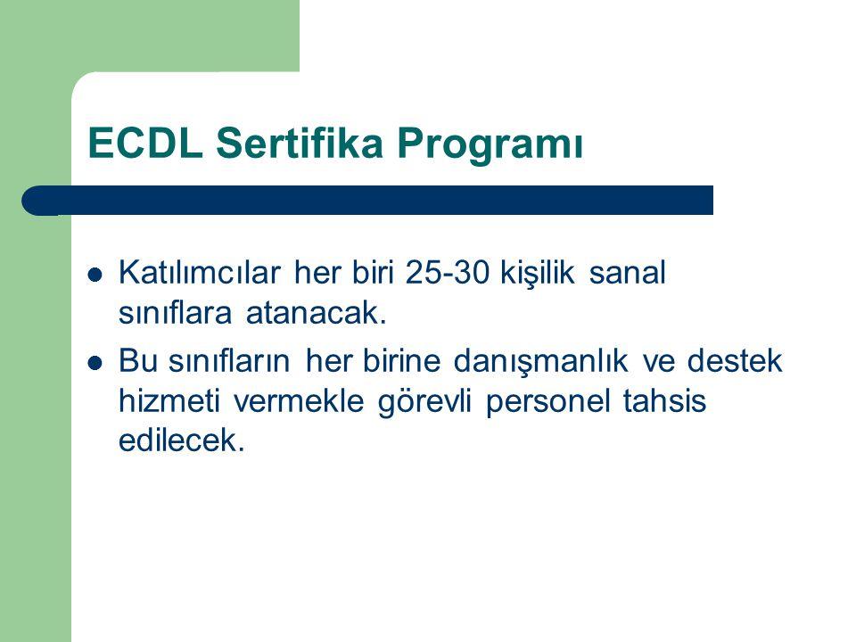 ECDL Sertifika Programı Katılımcılar her biri 25-30 kişilik sanal sınıflara atanacak. Bu sınıfların her birine danışmanlık ve destek hizmeti vermekle