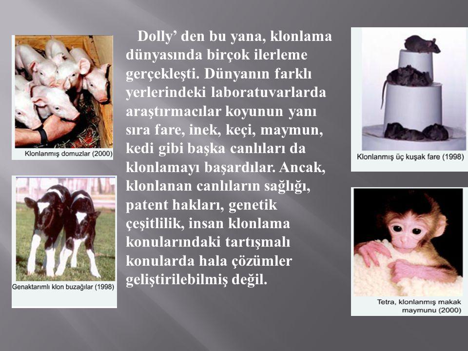 Dolly' den bu yana, klonlama dünyasında birçok ilerleme gerçekleşti. Dünyanın farklı yerlerindeki laboratuvarlarda araştırmacılar koyunun yanı sıra fa